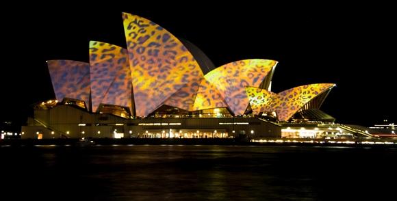 Opera House at Night in Sydney