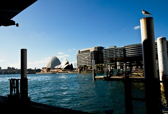 View from the Ferry Wharf in Sydney