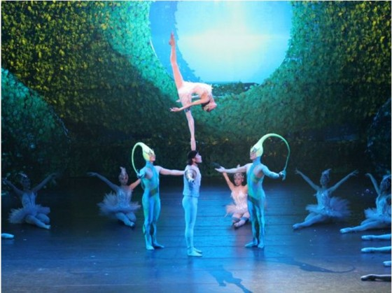 Swan Lake Acrobatic Ballet